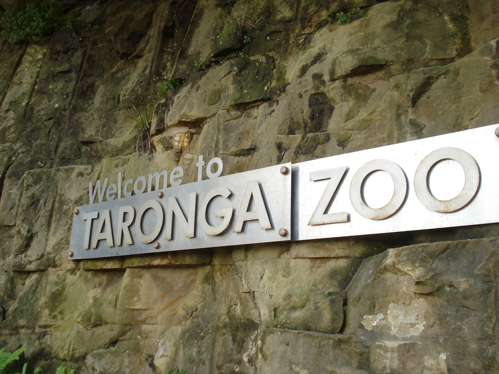 Australia, una visita allo Zoo di Taronga a Sydney