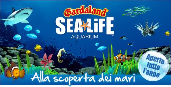 Parchi divertimento 2013: ecco tutte le novità del Sealife Aquarium