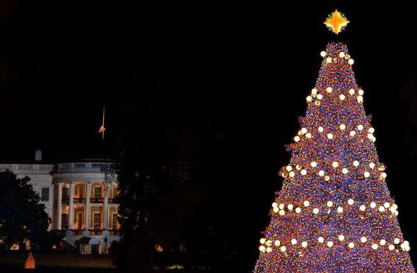 Natale a Washington D.C.: Obama inaugura il National Christmas Tree