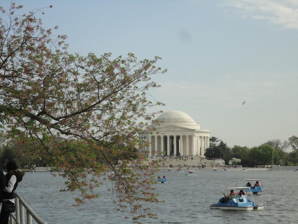 Cosa vedere a Washington: il Jefferson Memorial