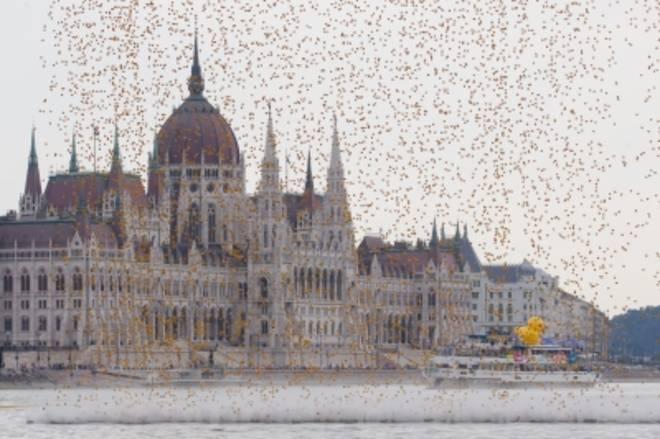 Budapest, pioggia inaspettata sul Danubio