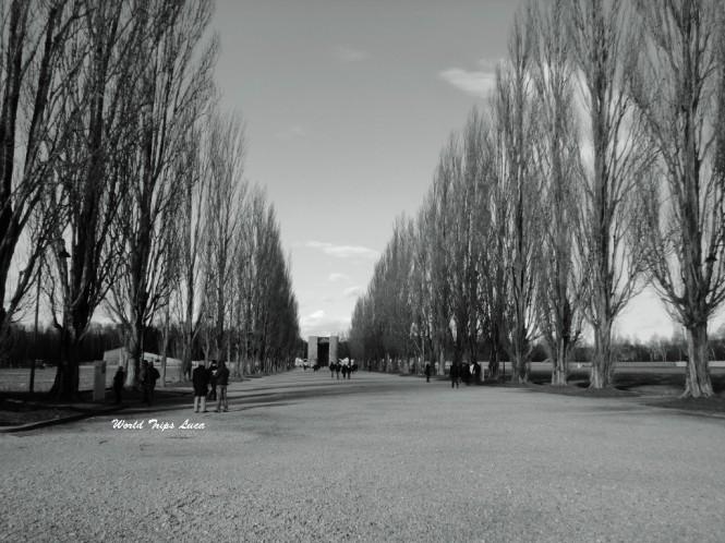 Luoghi della memoria: il campo di concentramento di Dachau