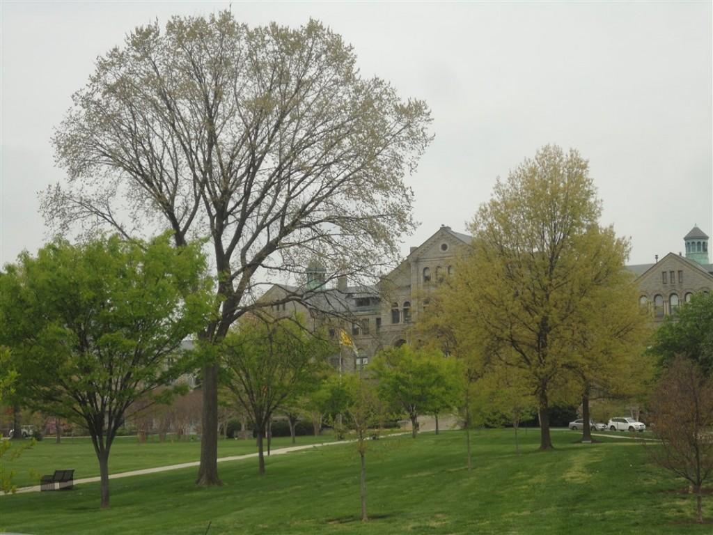 Uno scorcio dei giardini dell'Università Cattolica d'America