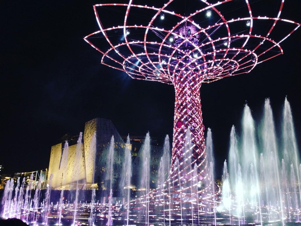 albero della vita expo