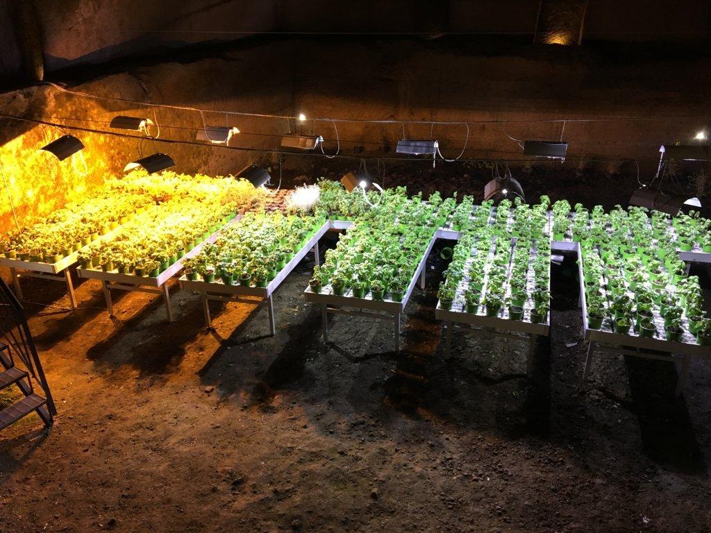 Ecco gli orti ipogei a Napoli Sotterranea