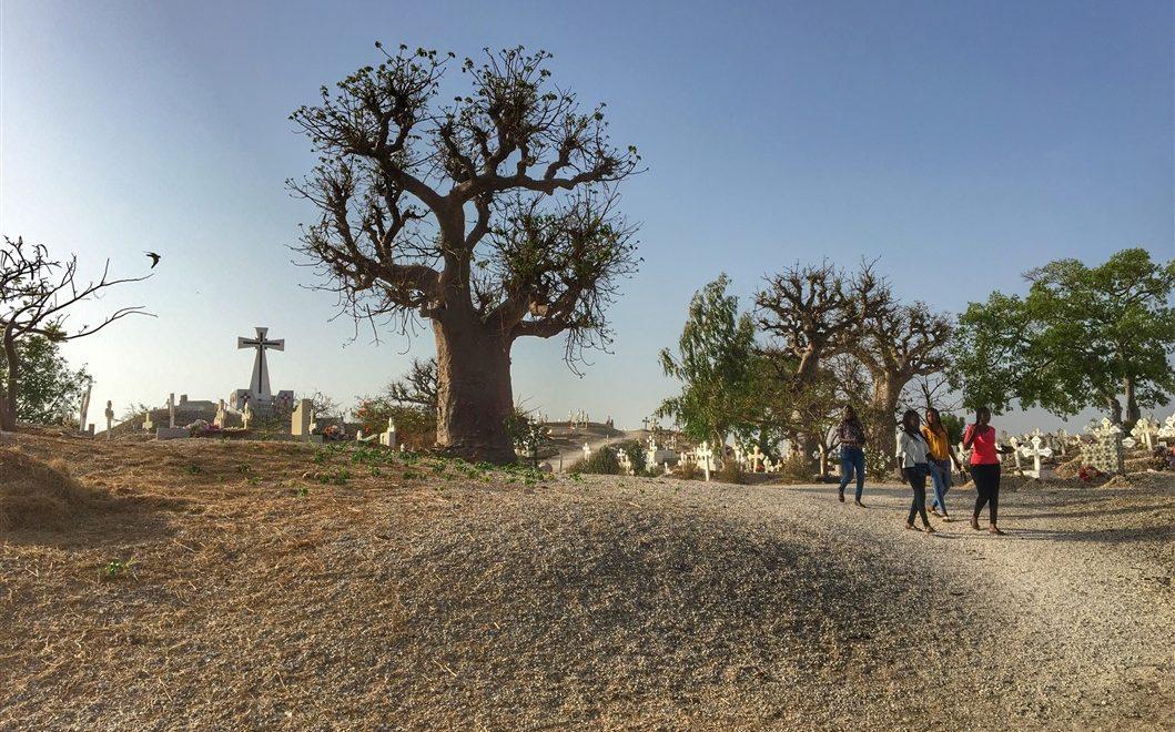Il cimitero delle conchiglie: simbolo di tolleranza in Senegal