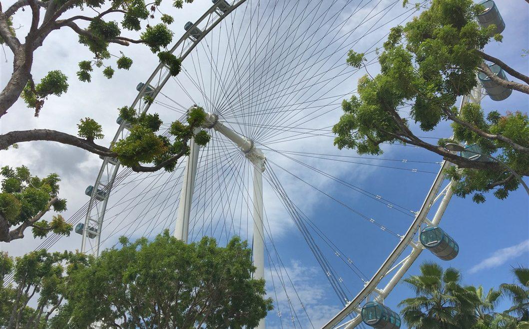 Singapore Flyer: per ammirare la città da 165 metri d'altezza