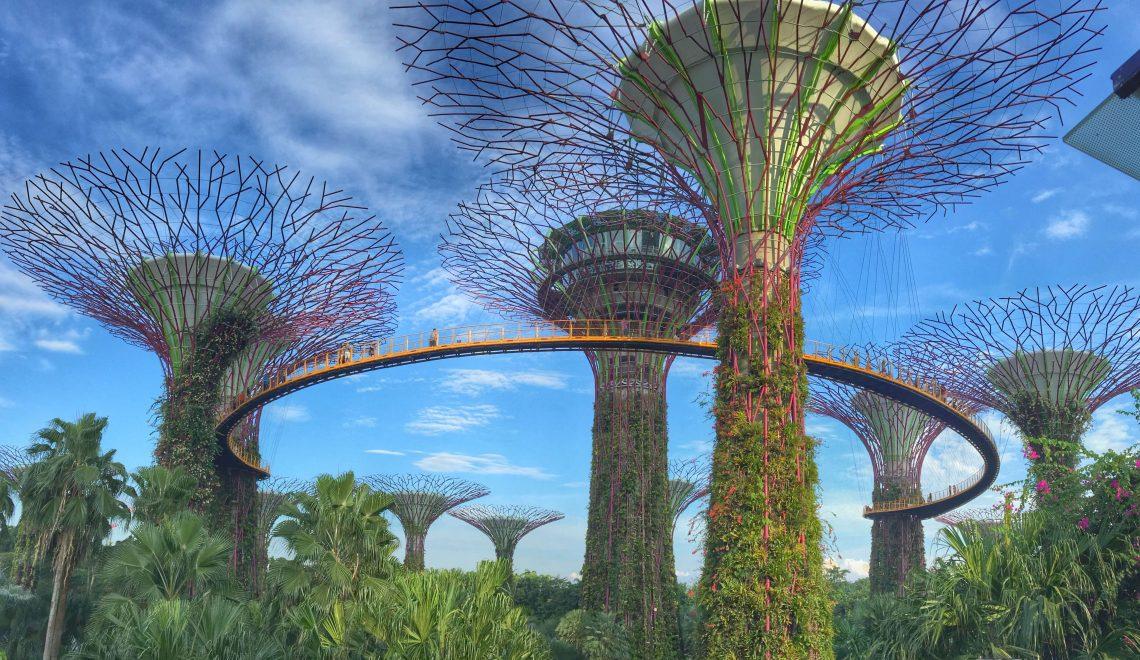 Gardens by the Bay: la natura incontra la tecnologia a Singapore