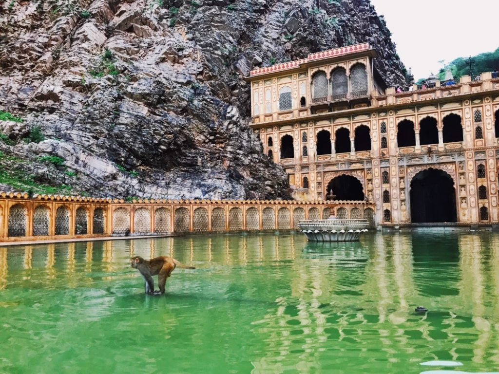 vedere a jaipur