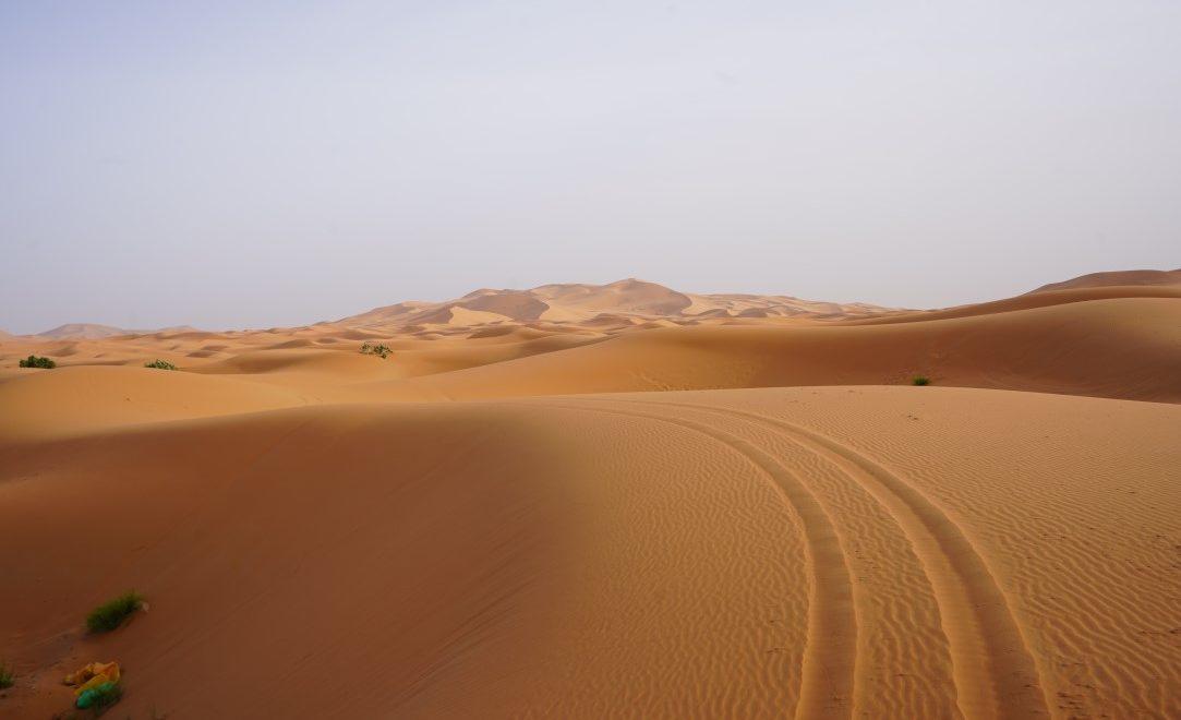Itinerario di 7 giorni in Marocco con Todra Tour Operator