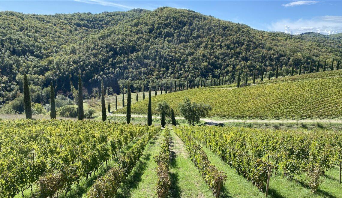 Itinerario tra i borghi del Chianti in Toscana