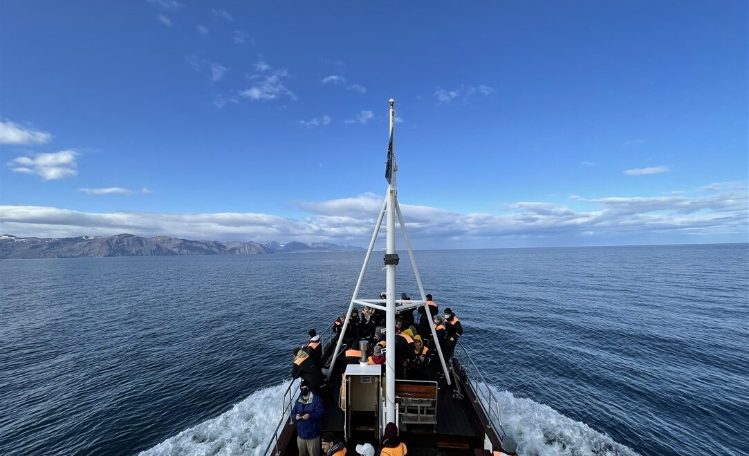Whale watching in Islanda: avvistare le balene ad Husavik